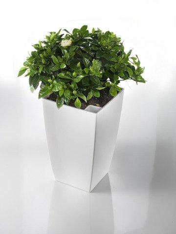 blumenk bel wei f r den innen und au enbereich wunderbar geeignet pflanzkuebel. Black Bedroom Furniture Sets. Home Design Ideas